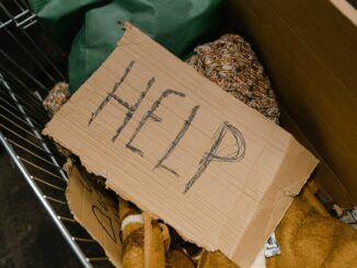 a cardboard with the word help written